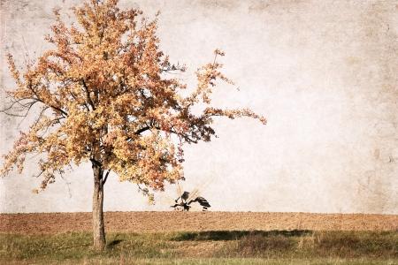 artwork  in retro style,  autumn