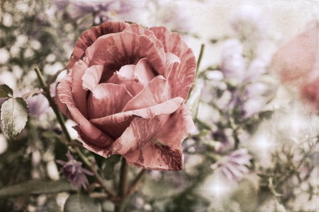 artwork  in painting style, roses