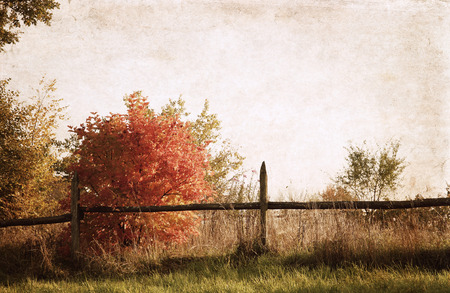 Artwork  in vintage  style,  autumn