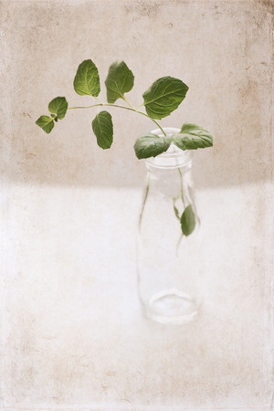 Artwork  in painting  style,  spring