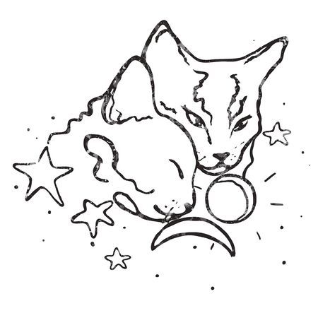 Vector drawing illustration/ simple line design/ two cute cats together/moon, stars and sun/ love
