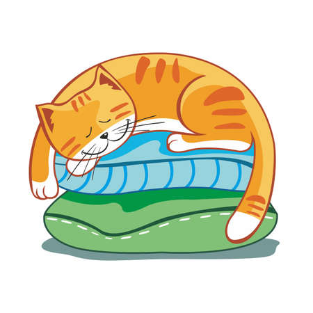 Striped red cat sleeps on pillows