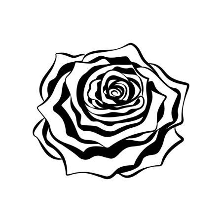 Intricate rose flower tribal ethnic tattoo detailed outline silhouette vector illustration design.