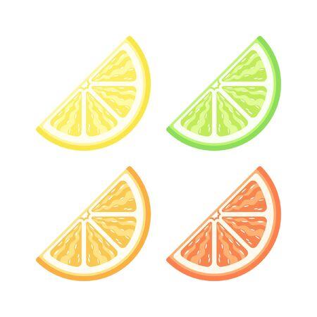 Citrus fruit quarter slice flat detailed with pulp vector icon design colored set. Lemon lime orange grapefruit sign symbol illustration.