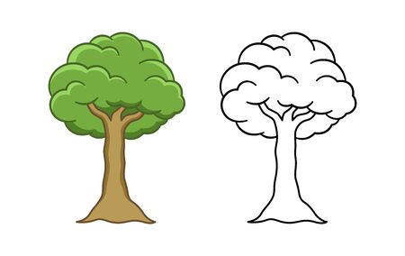 Cartoon tree colored and outline vector illustration. Simple coloring worksheet workbook page for kids.