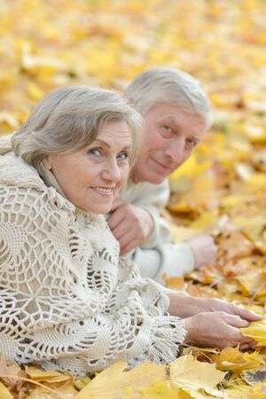lying on leaves: Portrait of a happy mature couple lying on the autumn leaves Stock Photo