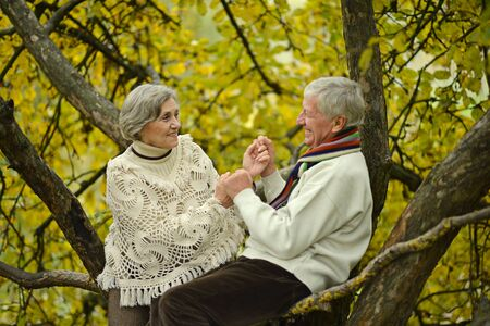 beauteous: Beauteous elderly couple sitting on tree in the park on a autumn day