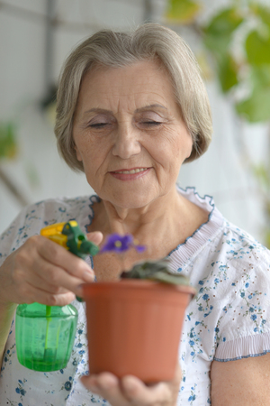 watering plant: Senior woman watering plant at home