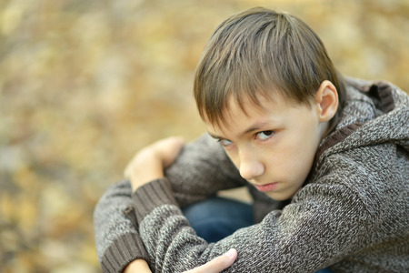 alone boy: Portrait of a happy little sad boy in autumn park