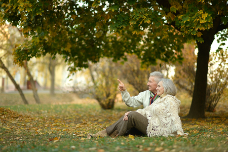 Happy elderly couple sitting in autumn park,man shows something by his hand Stock Photo