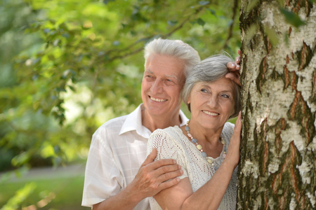 european white birch: loving mature couple on a walk in the park in summer