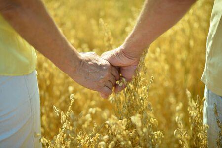 parejas amor: Elderly couple holding hands in field close-up Foto de archivo