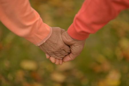 manos entrelazadas: Pareja de ancianos cogidos de la mano en el otoño de parque