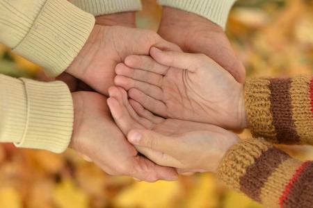 respetar: Retrato de las manos contra las hojas caídas amarillo
