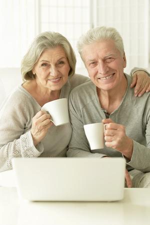 amiable: Portrait of a senior couple portrait with laptop Stock Photo