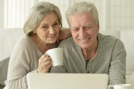 Portrait of a senior couple with laptop Reklamní fotografie