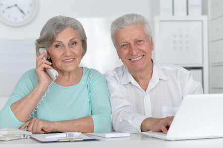 Portrait of a senior couple working with laptop