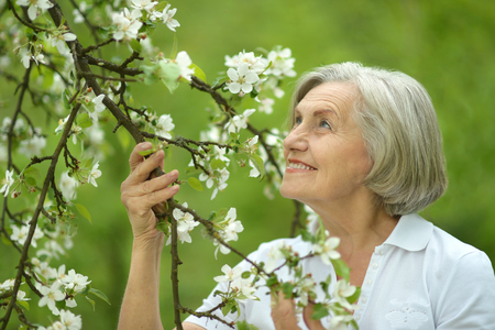 commercial tree care: Pensive elderly woman walking in the spring nature with cherry flowers