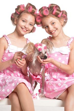 hair curlers: Cute  tweenie girls  in hair curlers  with dog  in studio Stock Photo