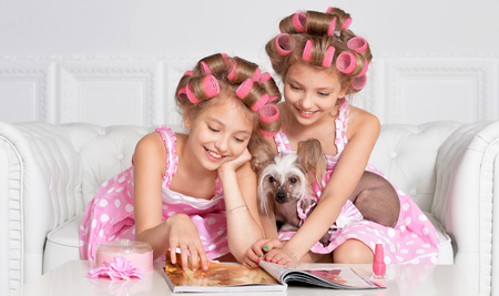 hair curlers: Cute  tweenie girls  in hair curlers  with dog  at home Stock Photo