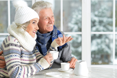 Cristmas: Portrait of senior couple drinking tea and chatting Stock Photo