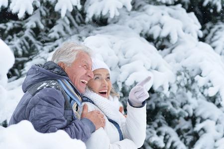 Portret van gelukkig hoger paar dat pret in de winterpark heeft, vrouw die op iets richt Stockfoto