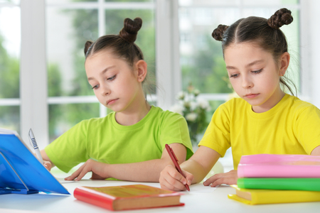 learning by doing: two sisters twins