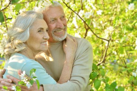 senior couple under blooming tree Stock Photo
