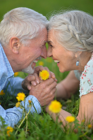 senior couple lying on meadow Stock Photo