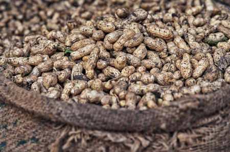 peanuts for sale on market Stock Photo
