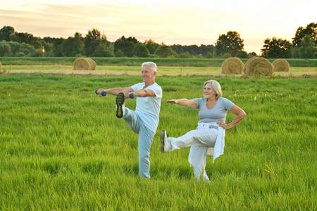 senior couple doing exercises Stock Photo