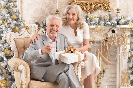 Portrait of a happy senior couple sitting in armchair in room 스톡 콘텐츠