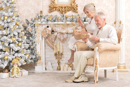 Portrait of happy senior couple celebrating Christmas