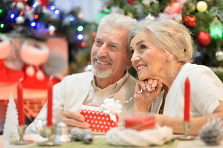 Portrait of happy senior couple celebrating Christmas