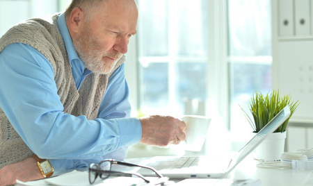 Portrait of mature businessman working with laptop in office Stock Photo