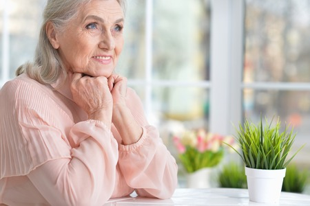 Portrait of cute happy senior woman posing at home