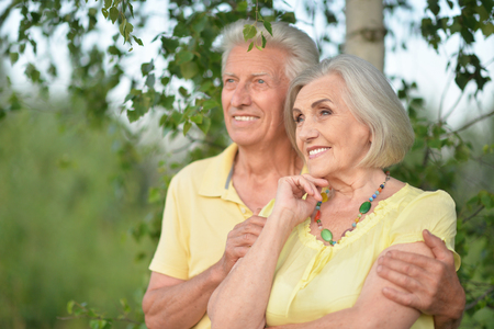 Beautiful senior couple hugging in the park Stock Photo