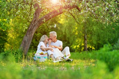 Portrait of loving elderly couple having a picnic