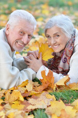 Portrait of happy senior couple lying in park