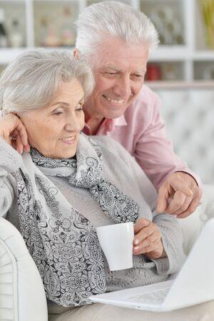 Portrait of senior couple using laptop at home Banco de Imagens
