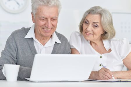 Portrait of senior people working with computer at home