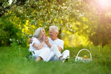 Portrait of happy senior couple having picnic Reklamní fotografie