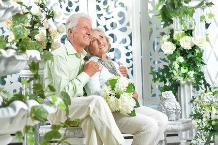 Portrait of happy beautiful senior couple posing at home Banco de Imagens