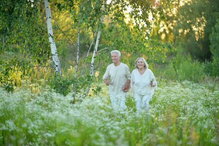 Beautiful senior couple posing in the summer park