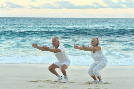 Portrait of fit senior couple exercising by sea