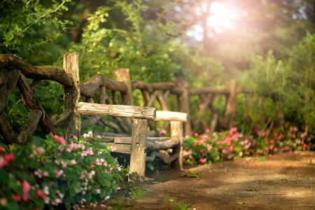 Wooden bench in beautiful park, in summer background