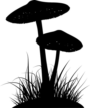 gills: Silhouettes of two poisonous mushrooms in the grass