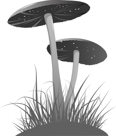 gills: Two mushrooms in the grass, grayscale illustration