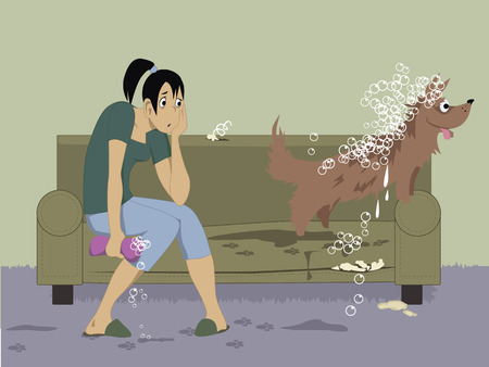 Washing a dog. Exhausted young girl sitting on a torn couch, holding a wet sponge, looking at her unruly excited dog, wet and covered with bubbles leaving dirty footprints on a carpet and on the furniture, vector illustration Ilustrace