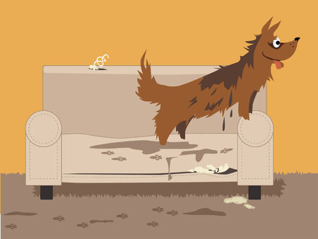 Wet dirty dog jumping on a torn chair, leaving paw track and puddles, vector illustration, no transparencies